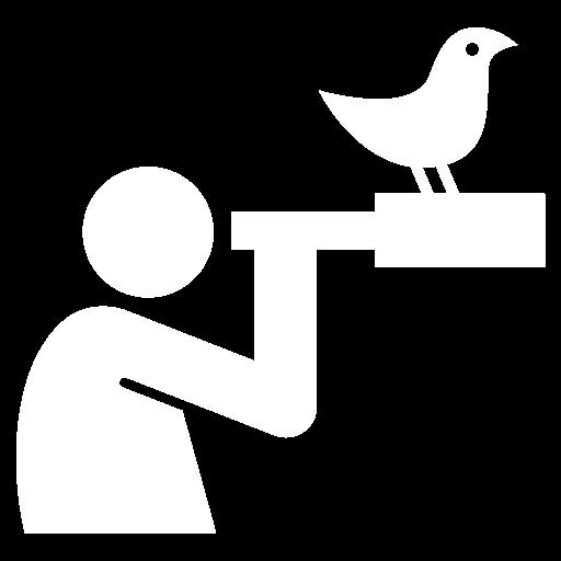 The Birding Guide